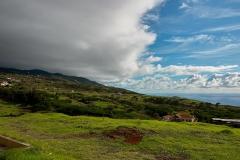 DSC_8316_Madeira